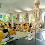 Анатомия йоги